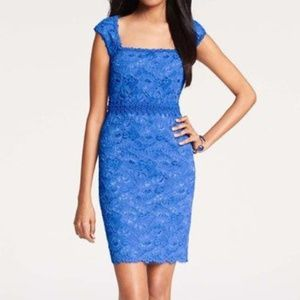 Ann Taylor blue lace dress